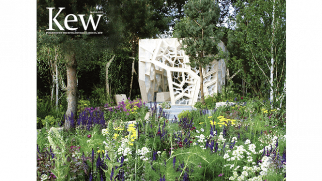 The Times Eureka Chelsea Garden Will Be On Display At Royal Botanical Kew Gardens Near Victoria Gate From 8 July 211 Until This Autumn
